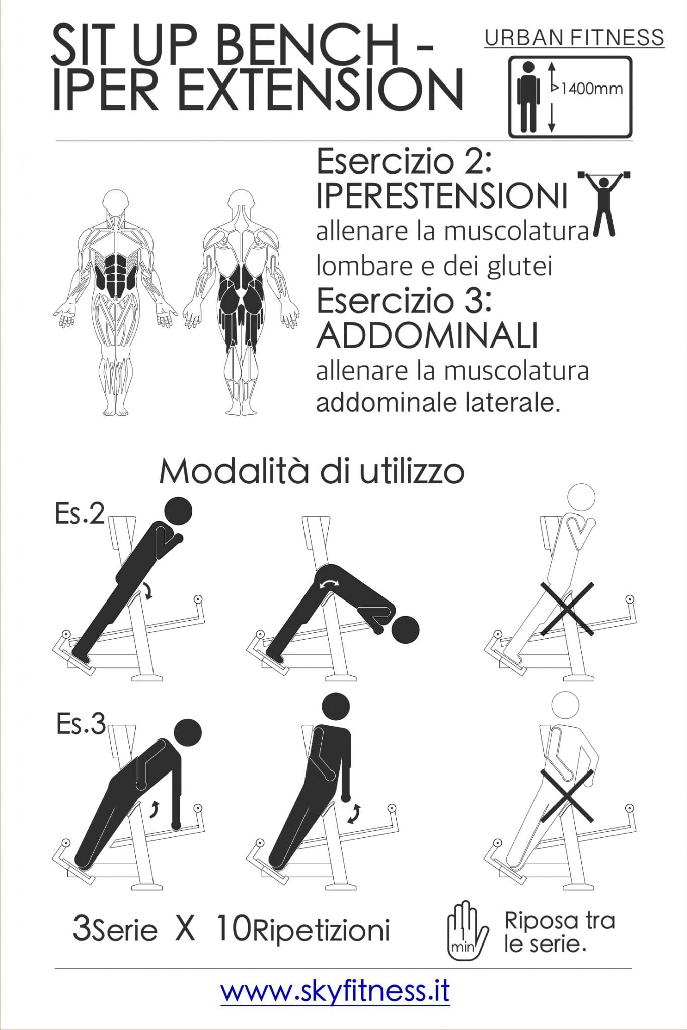 SIT UP & IPERXTENSION A